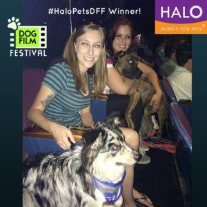 #HaloPetsDFF Winner! (2)