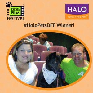 Dog Film Festival - #HaloPetsDFF