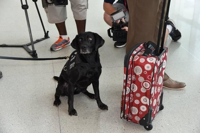 Photo credit: Michael Wilson, TSA