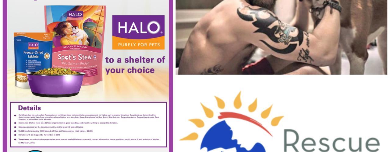 Tom Hardy Donates to Rescue from the Hart - Halo Pet donation #HaloFeeditForward