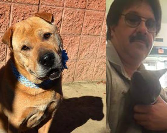 Ohio Shelter Dog Saves Cat