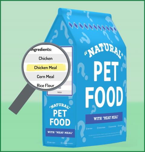 healthy-cat-food
