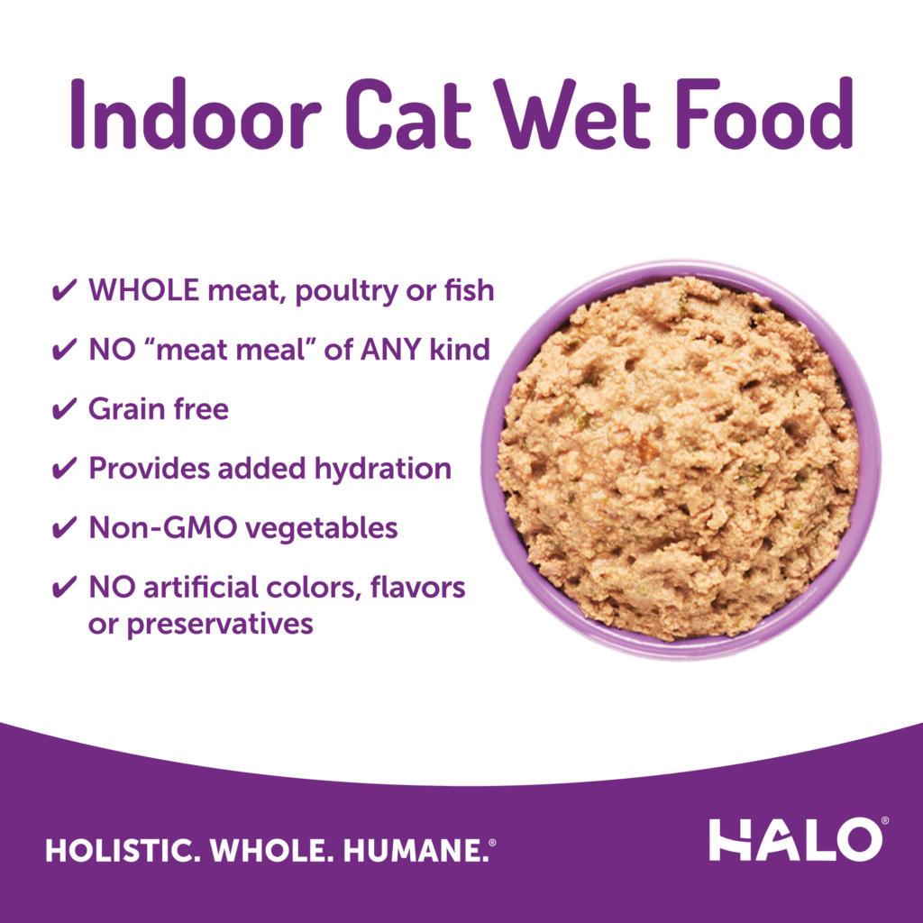 healthy cat food indoor chicken pate
