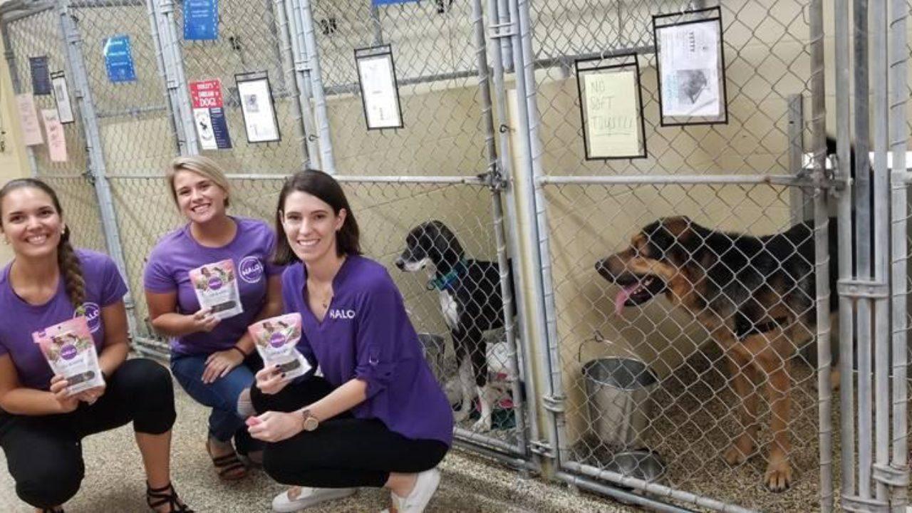 Halo Donates to the Humane Society of Tampa Bay