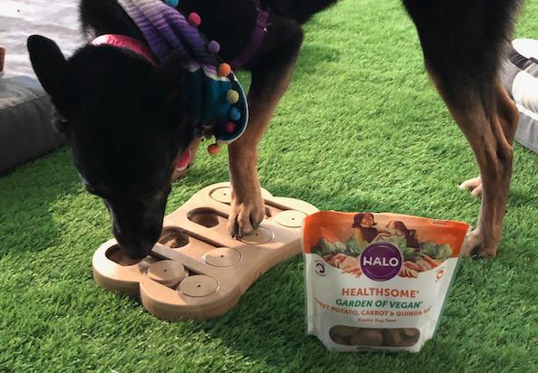 Halo Garden of Vegan dog treats
